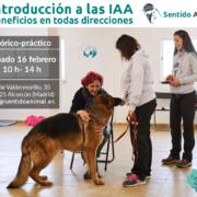 seminario: Introducción a las IAA