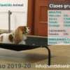 Clases grupales 2019-2020